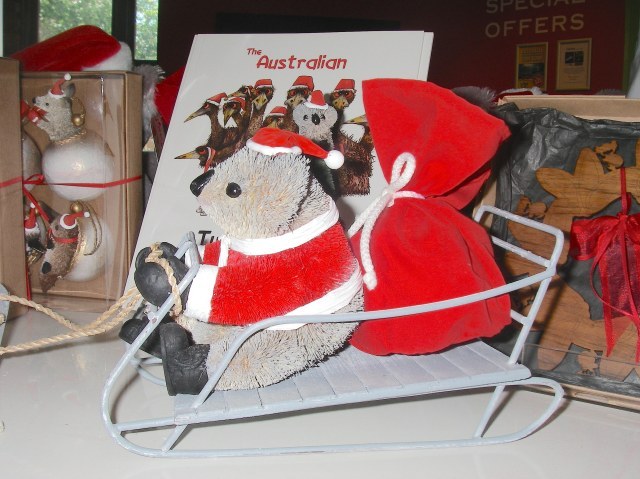 49.1. A koala Santa Clause in his sleigh is pulled by 12 white boomers, which are white kangaroos