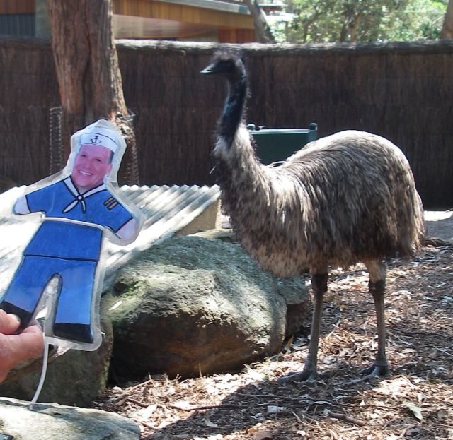 60.8. Flat Mr. Davis saw a huge emu in the Toronga Zoo
