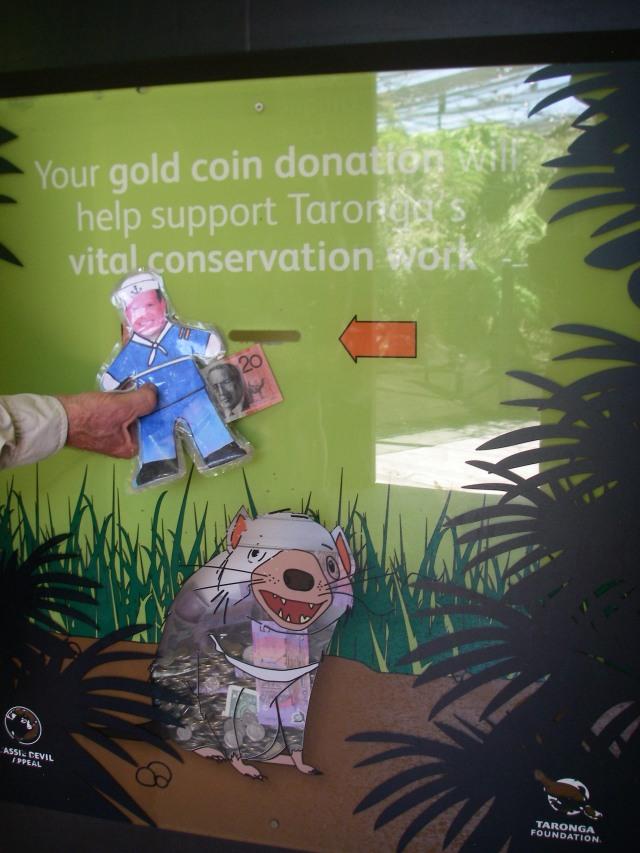 61.5. Flat Mr. Davis donated $20 Australian dollars to help Tasmanian Devils live